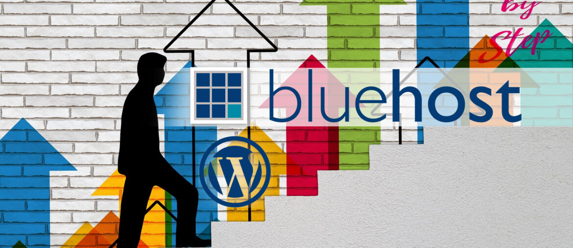 Bluehost step by step set up